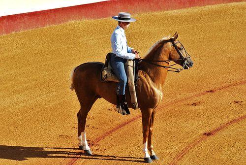 Spaanse ruiter te paard van