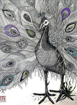 Pfau, Federzeichnung von Yvonne Jansen