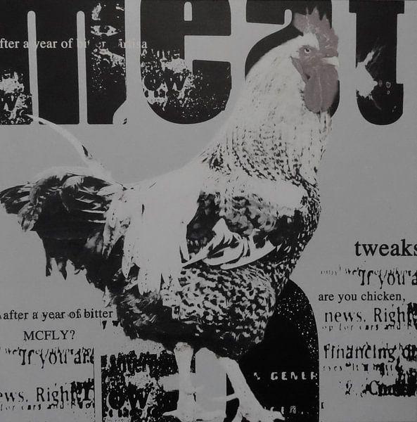Kip krant sur Muurbabbels Typographic Design