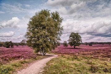 Heide op de veluwe - Nederland van Dries van Assen