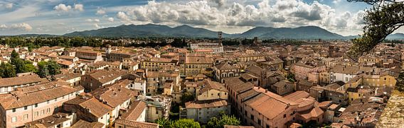 Panorama over Lucca - Italië van Damien Franscoise