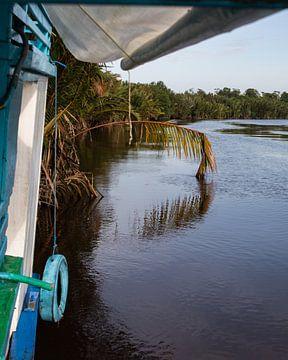 Ochtendlicht langs de rivier in Zuid-Borneo van Geert Keularts