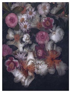 Herbst Botanical Kollektion von Marina de Wit