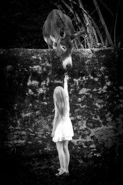 Meisje met ezel  sur Renate van der Heijden