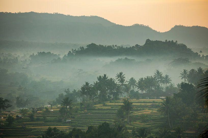 Uitzicht op mistige rijstvelden in Sidemen op Bali in Indonesië (gezien bij vtwonen) van Michiel Ton