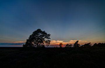 Sonnenuntergang Holterberg von Arnold van Rooij