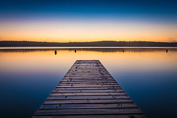 Morgen am See von Martin Wasilewski