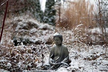Little Buddha im Winter von t.ART
