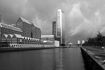 Rotterdam , Kop van Zuid van Pauline Aalfs