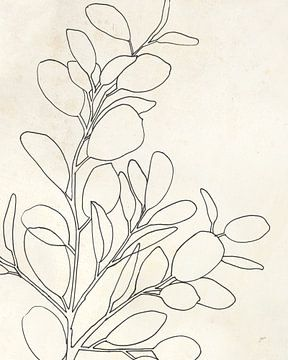 Eucalyptus i, Karyn Panganiban van Wild Apple