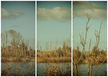 lauwersmeer triptychon 19 von anne droogsma