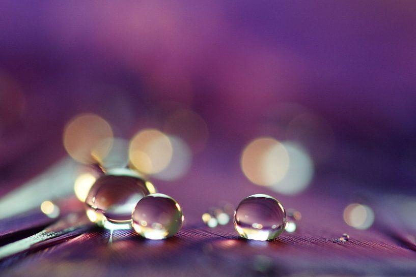 Violet drops van Carla Mesken-Dijkhoff