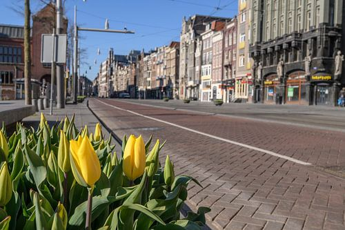Damrak straat in Amsterdam tijdens een zonnige ochtend