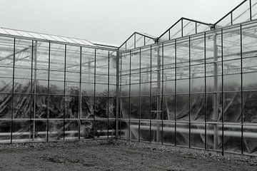 Glas! von THEMISON hobby