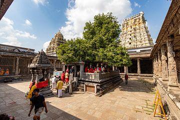 De heilige mangoboom in de Ekambareswarar Tempel, Kanchipuram van Martijn Mureau