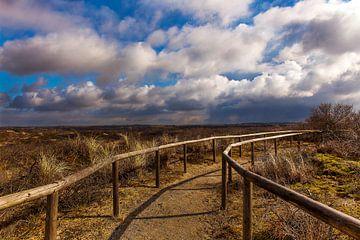 La zone des dunes de Meijendel sur Eelco de Jong