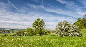 Panorama Mamelis en Vijlen in Zuid-Limburg van