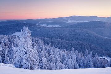Winterlandschap bij de Belchen bij zonsopgang in het Zwarte Woud van Markus Lange