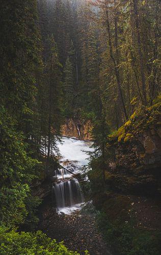 Herfst waterval van