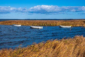Boote auf der Ostsee auf der Insel Moen in Dänemark von Rico Ködder