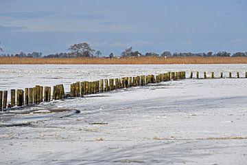 Winters landschap van Tjamme Vis