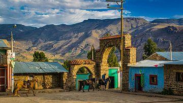 Platz der Coporaque mit Pferden in der Abendsonne, Peru von Rietje Bulthuis