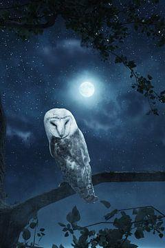 Mooie uil in het maanlicht van Besa Art