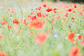 Blumenfest von Peter van Rooij
