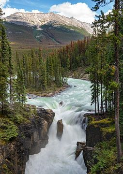 Sunwapta Falls, Jasper National Park, Alberta, Canada van Alexander Ludwig