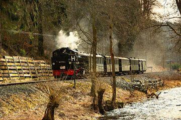 Fichtelbergbahn ErzgebirgeFichtelbergbahn Erzgebirge von Johnny Flash