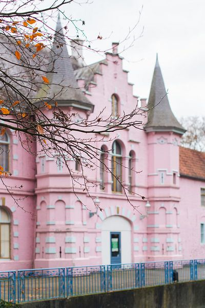 Land van Ooit - roze kasteel van Anki Wijnen