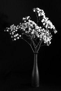 Stilleven met witte bloemen, monochroom van Felix Sedney