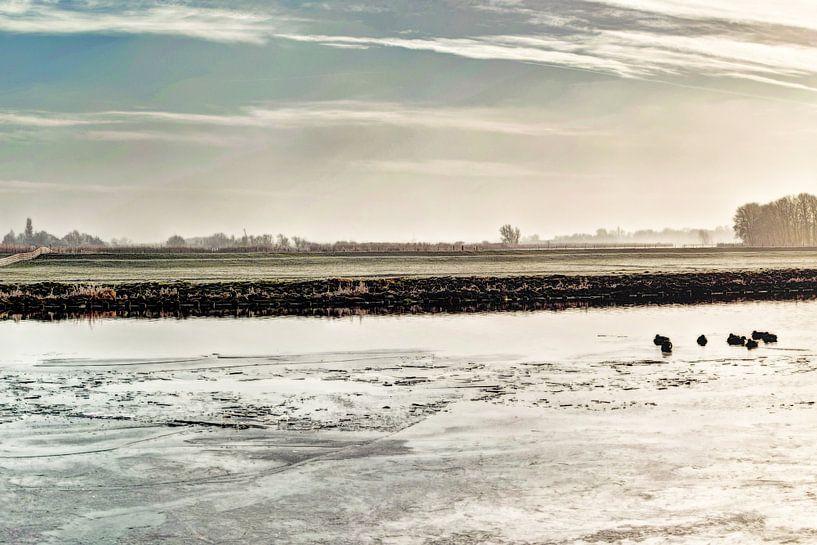 Kager Ader Polder Nederland van Hendrik-Jan Kornelis