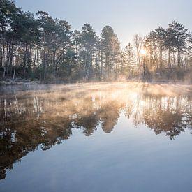Stimmungsvoller Sonnenaufgang an einem Moor in der Heide von John van de Gazelle