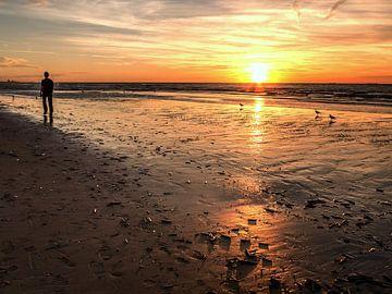 Eenzame wandelaar 's avonds aan het strand van Anneriek de Jong