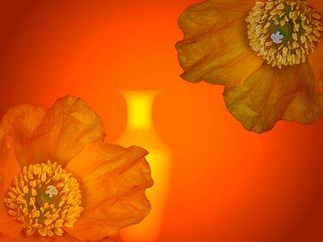 Mohnblüten van Martina Fornal