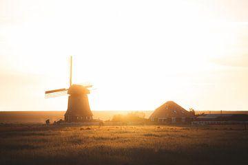 Goldene Stunde im niederländischen Polder von Tes Kuilboer