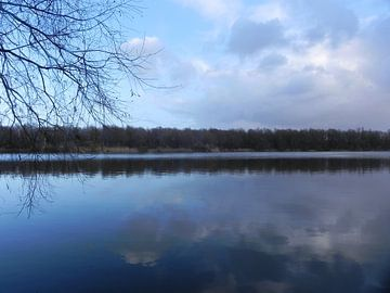 Wolken en bomen weerspiegeld in het water in de bossen van Flevoland van Ingrid Van Maurik