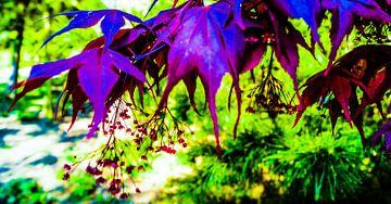Paarse pladeren met Bloemen van Jane Changart