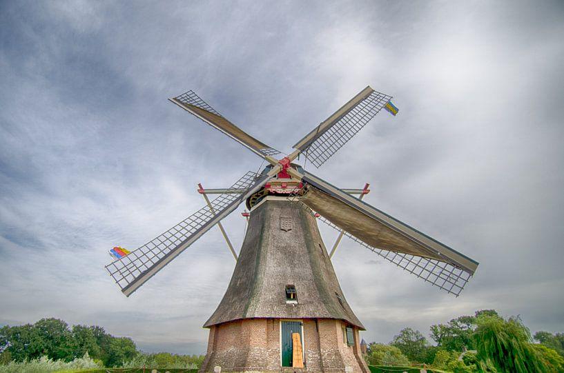 Reusachtige molen van Mark Bolijn
