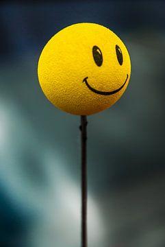 Glimlach, dan kunt u glimlachen. van Norbert Sülzner