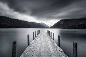 Nebel über Lake Rotoiti in Neuseeland