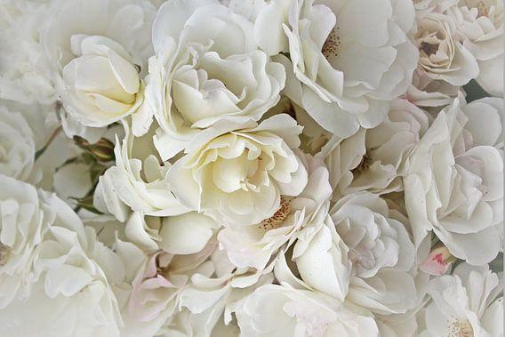 White Roses ( witte rozen ) van Yvonne Blokland