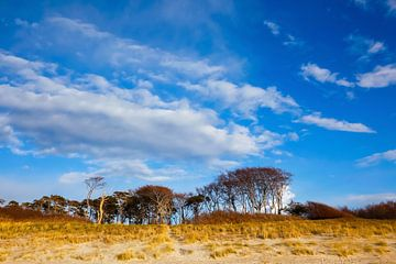 Himmel am Ostseestrand van