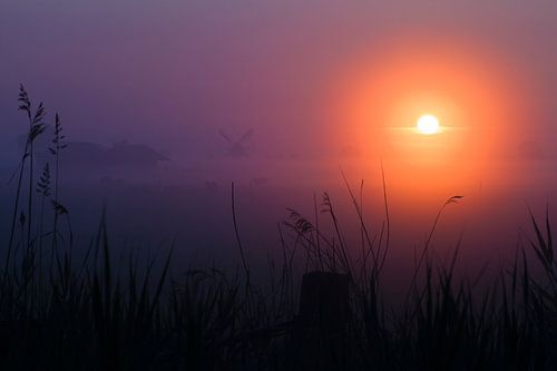 Molen in de mist tijdens zonsopkomst van