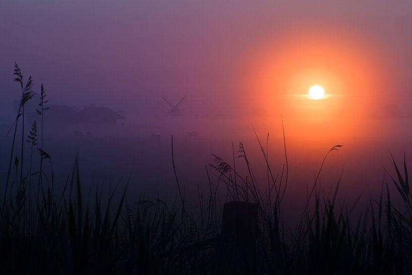 Niederländische Windmühle im Nebel während des Sonnenaufgangs.  sur Mark Scheper