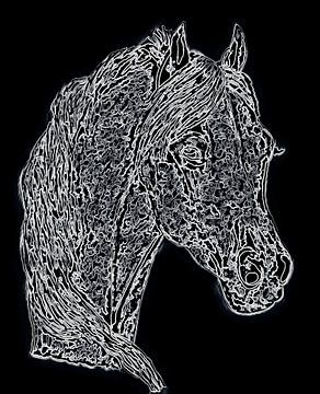 Paardenhoofd van Jose Lok