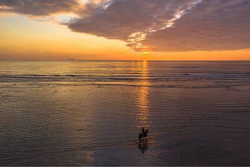 Zonsondergang met paard op het strand van Rene Ouwerkerk