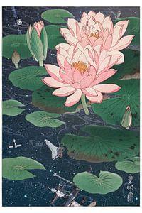 Water Lilies von Jonas Loose