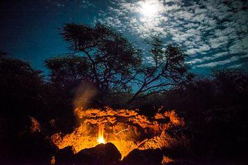 Feuer im Mondschein von Ellis Peeters
